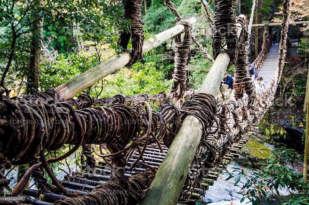 The Vine Bridges of Iya Valley, Tokushima, Shikoku, Japan stock photo