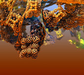 The vineyard of aliens, abstract 3d graphic of a three-dimensional Mandelbrot fractal, calculated with the free Mandelbulb 3D program JPEG Graphic