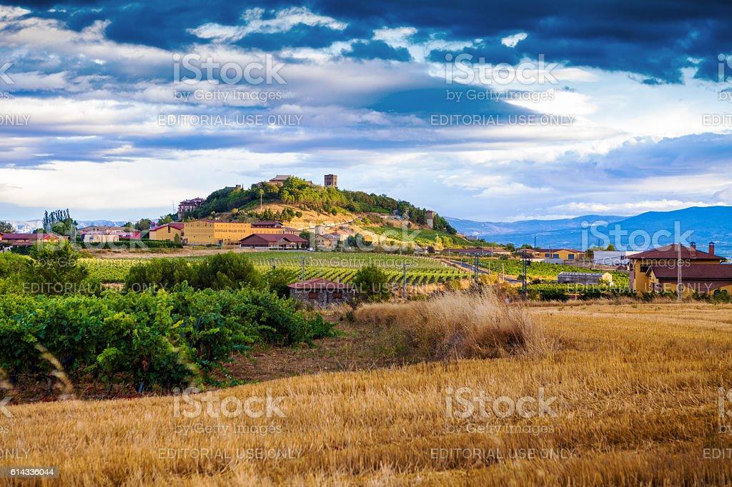 The vineyards of Rioja – Foto