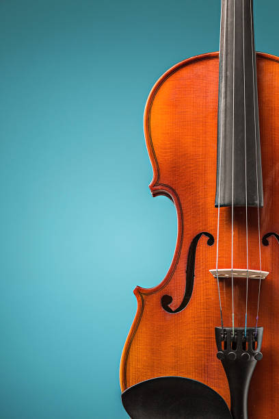 The violin front view on blue The violin front view on blue string instrument stock pictures, royalty-free photos & images