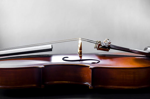 The violin on the table
