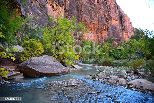 As seen from Riverside Walk, the North Fork Virgin River flows south through Zion Canyon in Zion National Park.