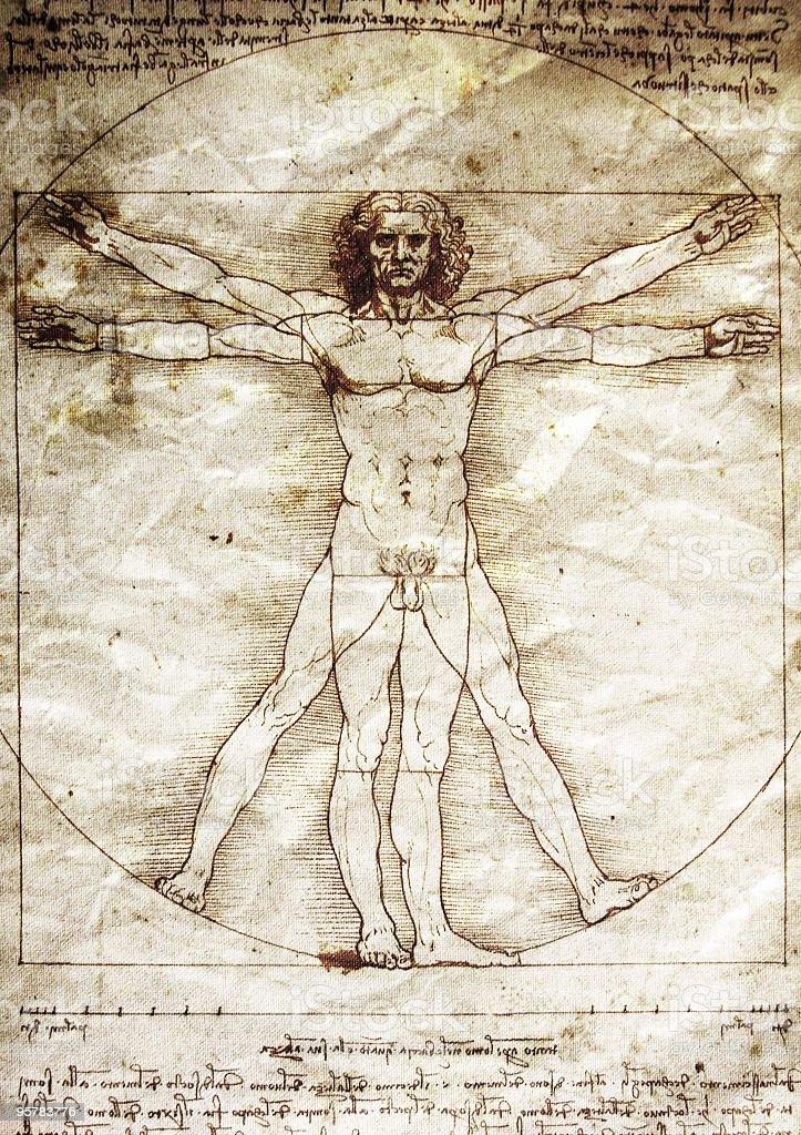 The Vitruvian Man by Leonardo da Vinci stock photo