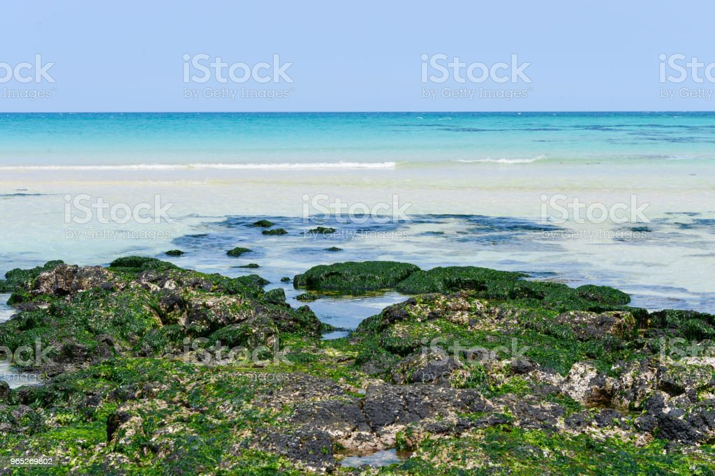 The Waljungli beach is good to rest quite a long while in the Jejudo island. royalty-free stock photo
