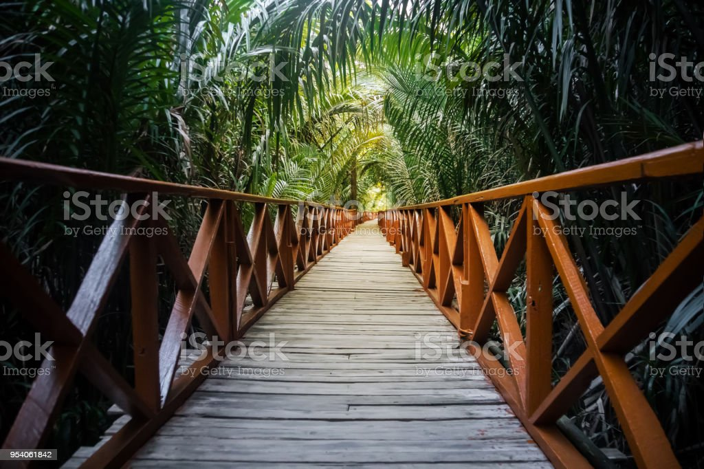The walkway is made from a wooden bridge has handrails used stock photo
