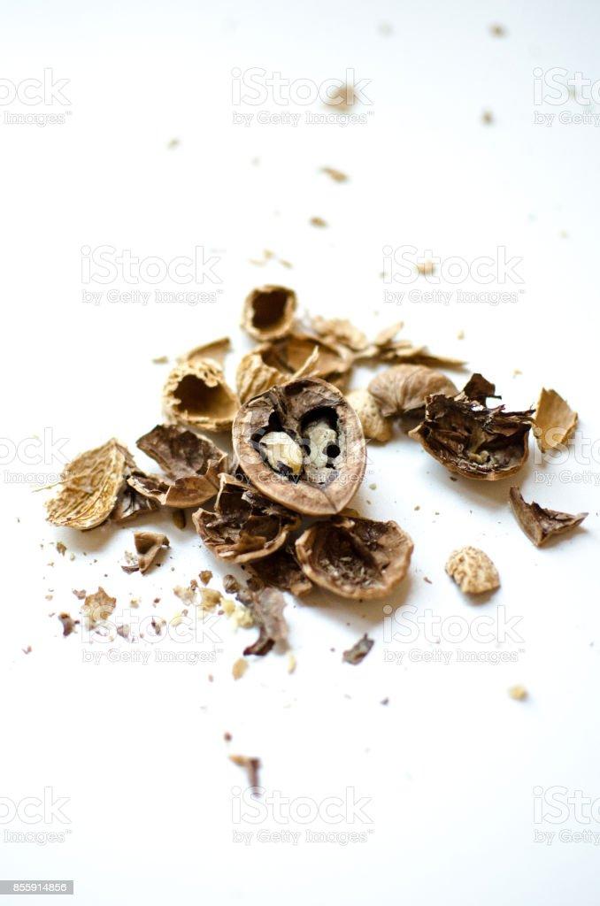 The Walnut stock photo