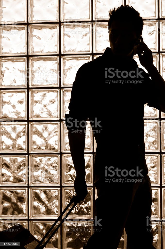 The Wanderer royalty-free stock photo