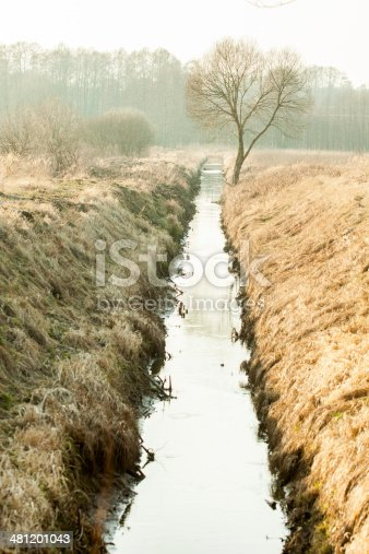 The water channel between the fields in the forest