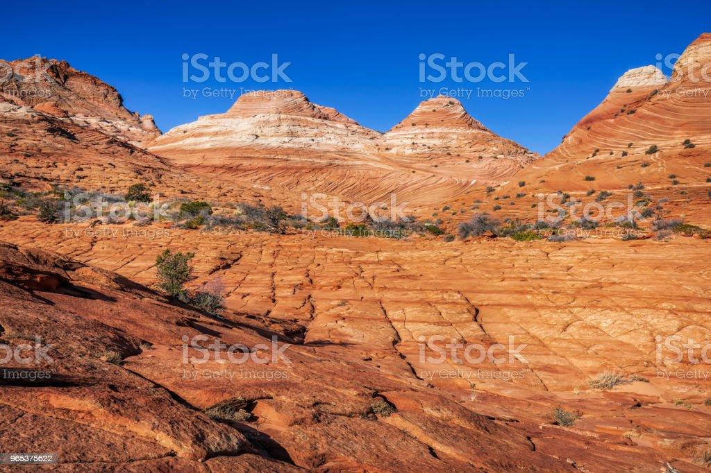 The Wave Arizona royalty-free stock photo