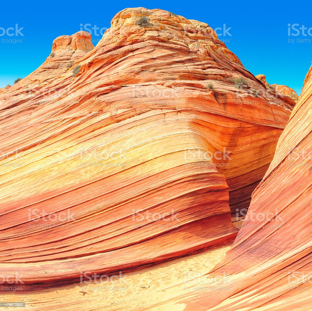 The Wave in Arizona, amazing sandstone rock formation stock photo