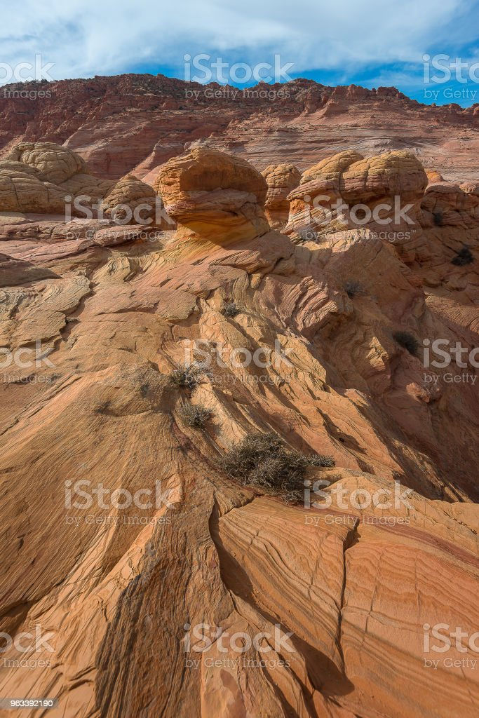 Fala, Navajo Sandstone, Arizona - Zbiór zdjęć royalty-free (Bez ludzi)
