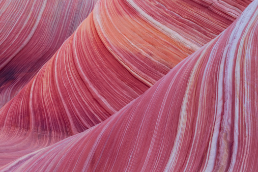 Incredible stripes in the sandstone of the Wave, Coyote Buttes North, Arizona.