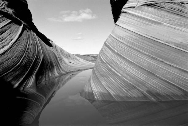 die welle mit wasserwiederbringungen #1 in coyote buttes area of vermilion cliffs national monument an der grenze von arizona utah usa in black and white film (original, weicher, bild) - colorado plateau stock-fotos und bilder