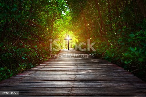 istock The way to Christ 825108772