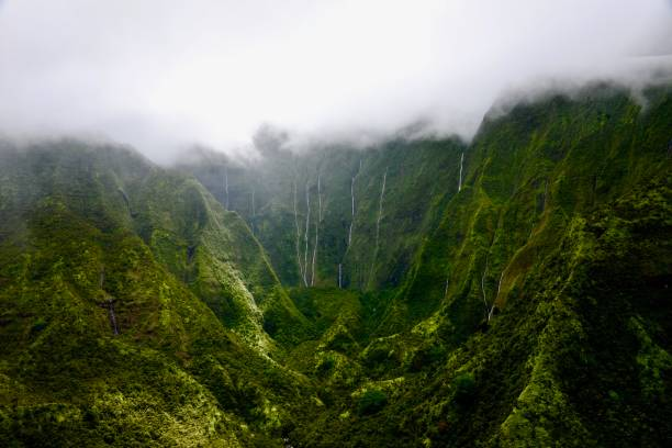 The Weeping Wall, Kauai The Heart of Kauai: Mount Waialeale and the Weeping Wall, Hawaii. The wettest place of Earth due to orographic precipitation. rock formations stock pictures, royalty-free photos & images