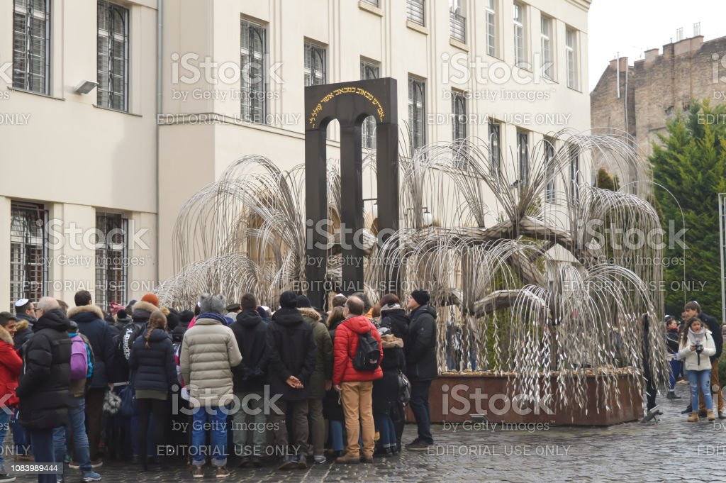 The Weeping Willow Tree In The Courtyard Of Central Synagogue In Budapest  Stock Photo & More Pictures of 2017