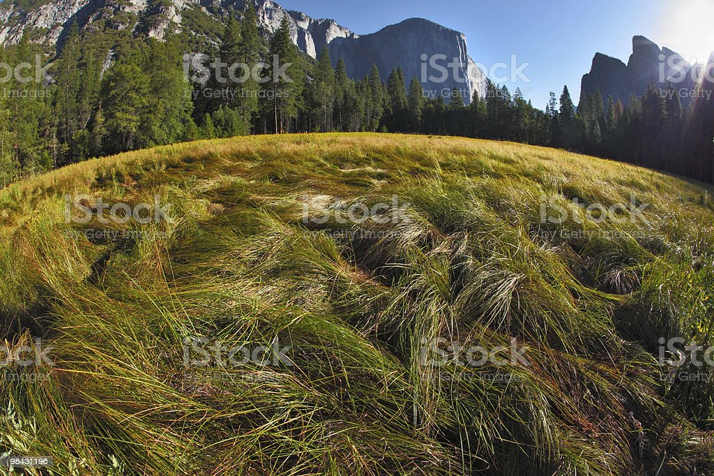 The  well-known  Yosemite  park royalty-free stock photo