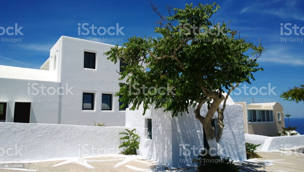 The white building on the island of Santorini in Oia village and the bright green tree beside him stock photo