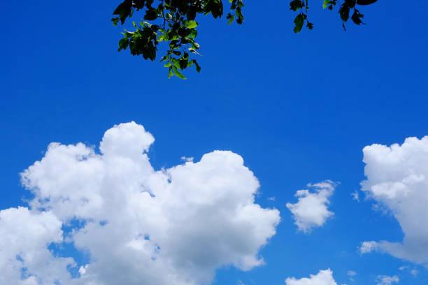 As nuvens brancas - foto de acervo