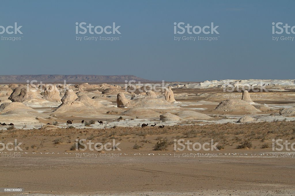 The White Desert at Farafra in the Sahara of Egypt royalty-free stock photo