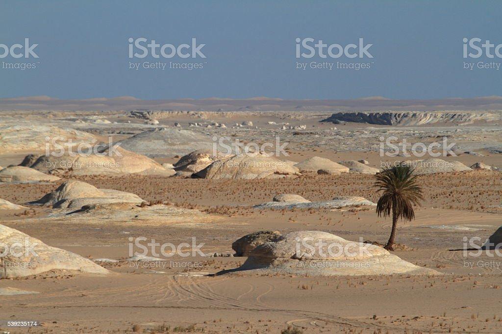 O Deserto Branco no Farafra do Sahara do Egito foto royalty-free
