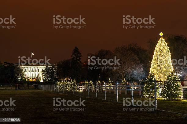 The white house and the national christmas tree picture id494249236?b=1&k=6&m=494249236&s=612x612&h=x2dnbdmx8mm6ib5ptpnhq5pzuhjmfk9rm3yydefisbc=