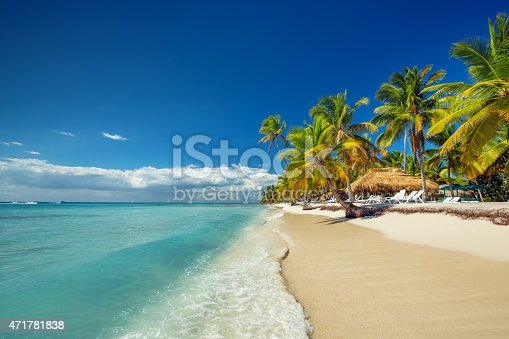 istock The white sands and palm trees of a tropical beach 471781838