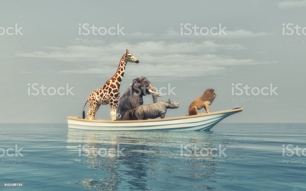The wild animals stock photo
