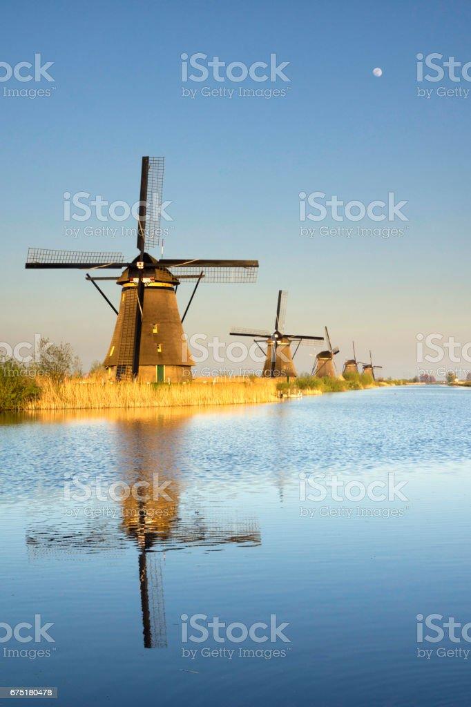 The windmills in Kinderdijk stock photo