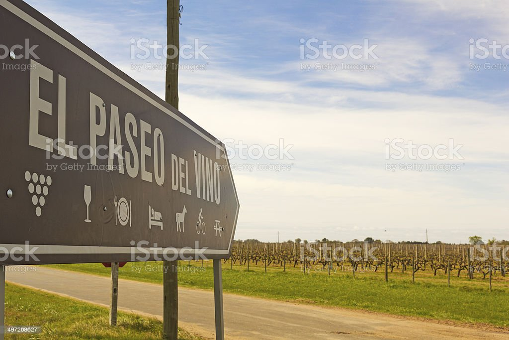 The wine walk, Uruguay stock photo