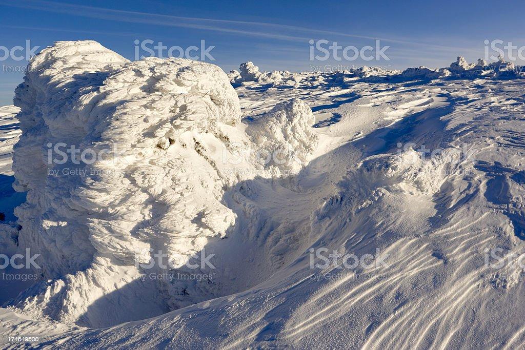 The winter motives royalty-free stock photo