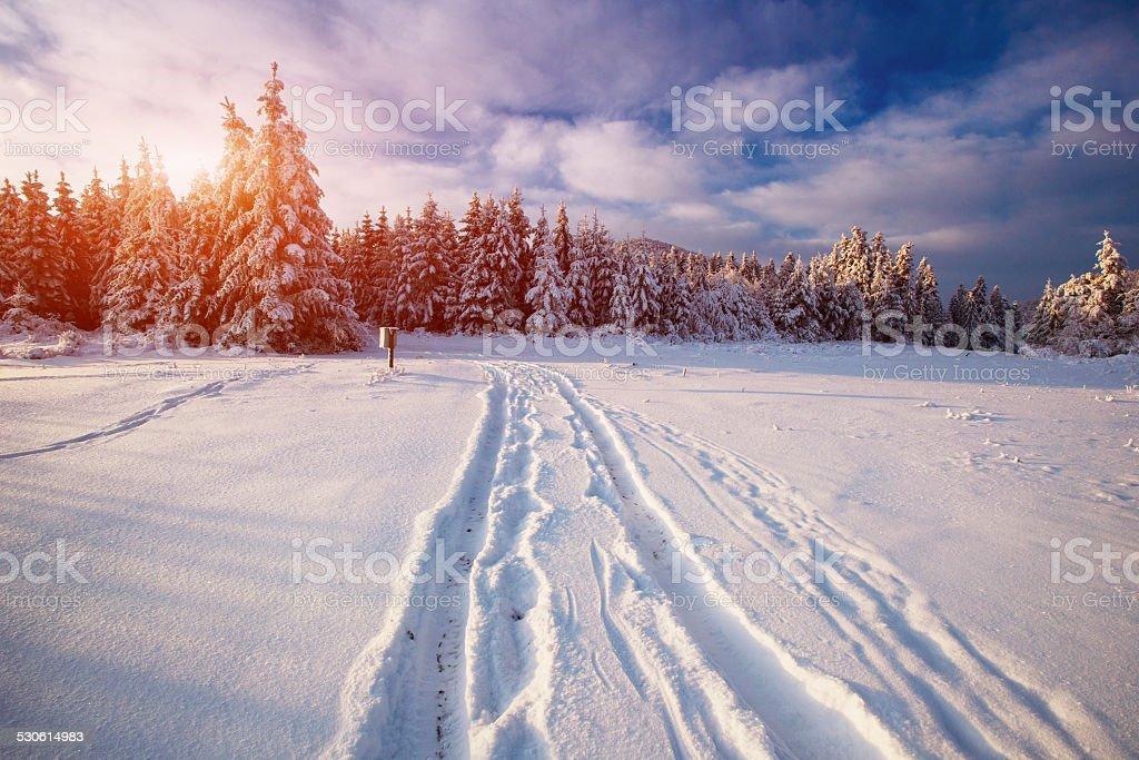 the winter road stock photo