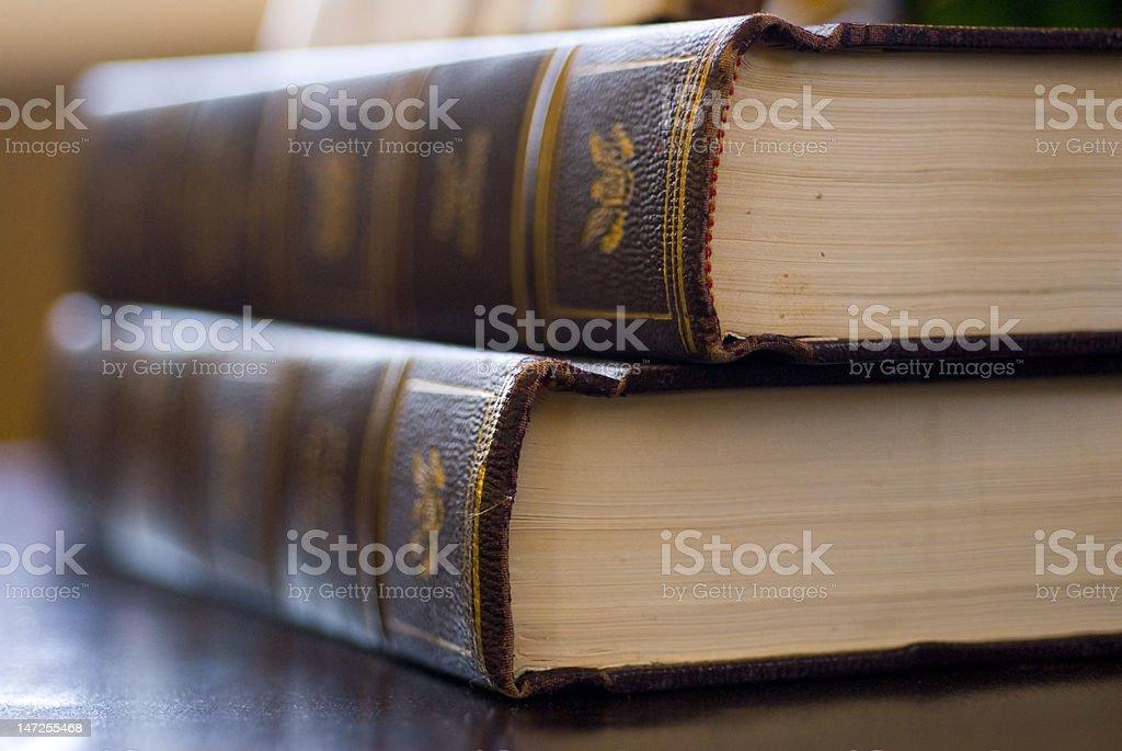 The Wisdom of Books royalty-free stock photo