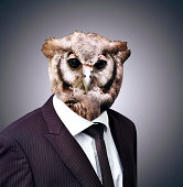 Studio portrait of a businessperson with an owl headhttp://195.154.178.81/DATA/i_collage/pi/shoots/784098.jpg