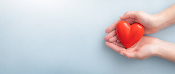 The woman is holding a red heart. The woman is holding a red heart. Concept for charity, health insurance, love, international cardiology day. healthy heart stock pictures, royalty-free photos & images