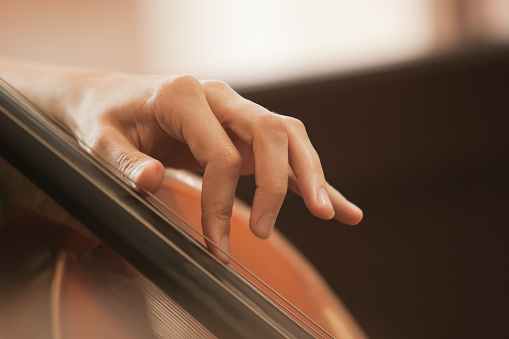 The woman's fingers on the strings of a cello