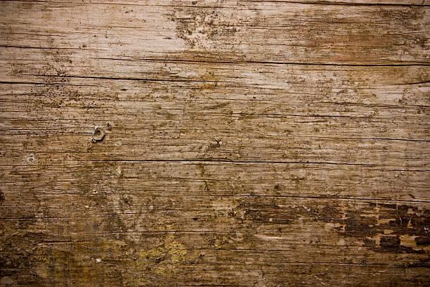 The wood background stock photo