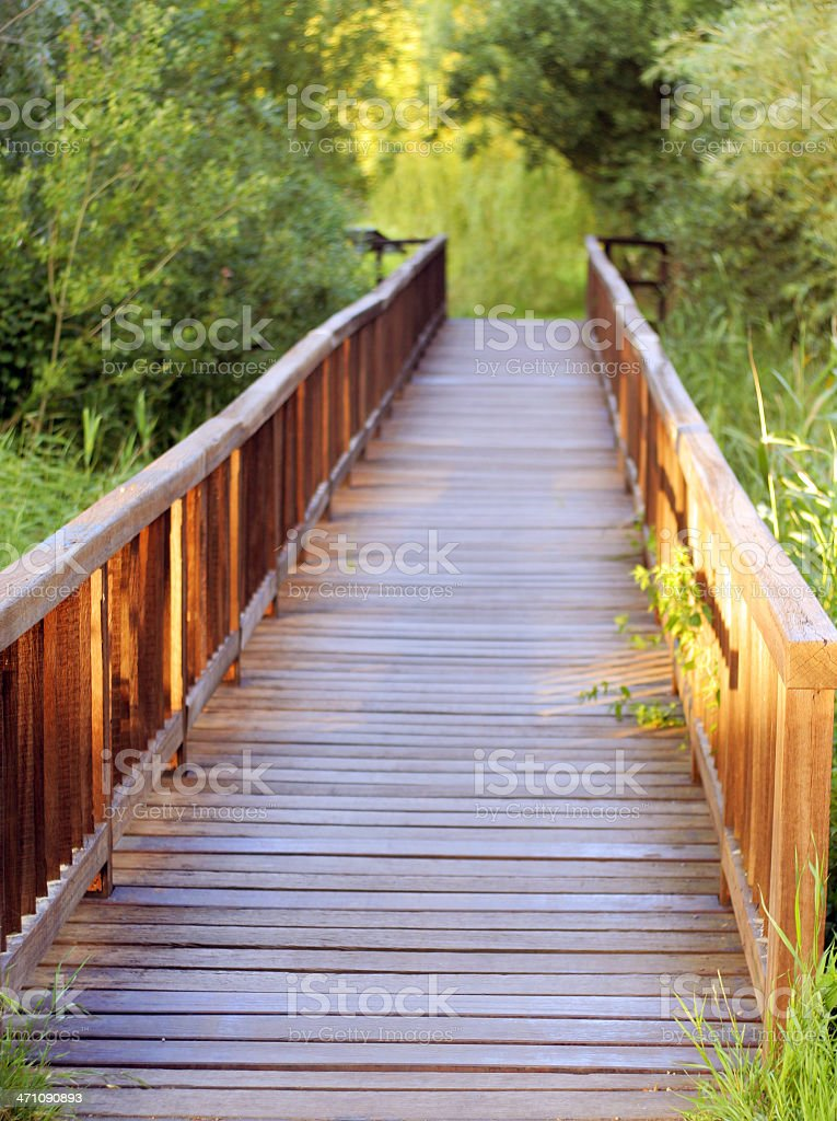 The wood bridge into the greens royalty-free stock photo