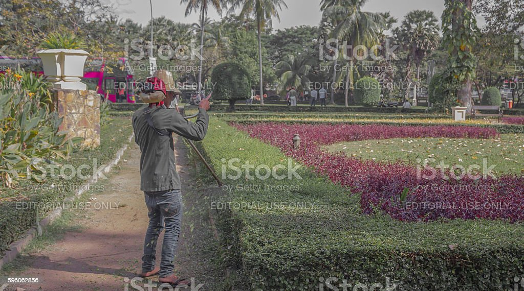 The workers were trimming trees royalty-free stock photo