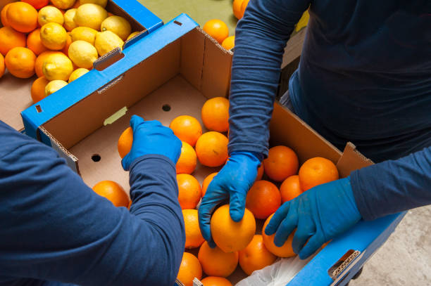 the working of oranges - crisp packet stock photos and pictures