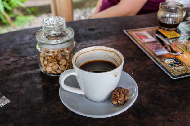 The world famous brewed luwak coffee and original coffee beans excreted by the civet stock photo