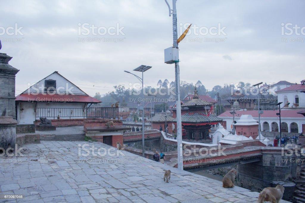 The world Heritage Pashupatinath Temple Nepal stock photo