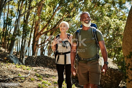Shot of a senior couple hiking together out in the mountains