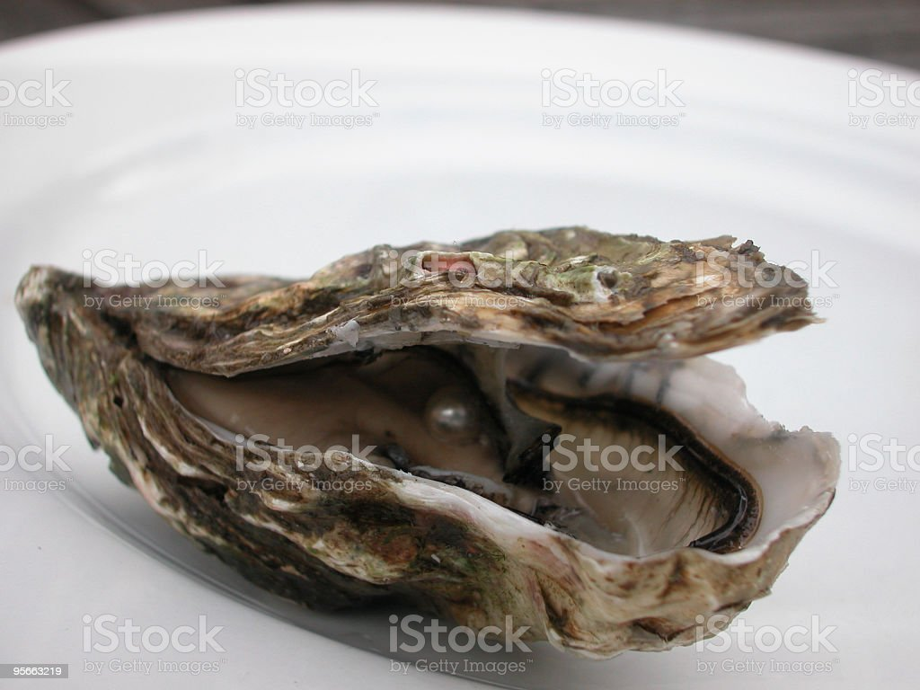 The world is your oyster royalty-free stock photo