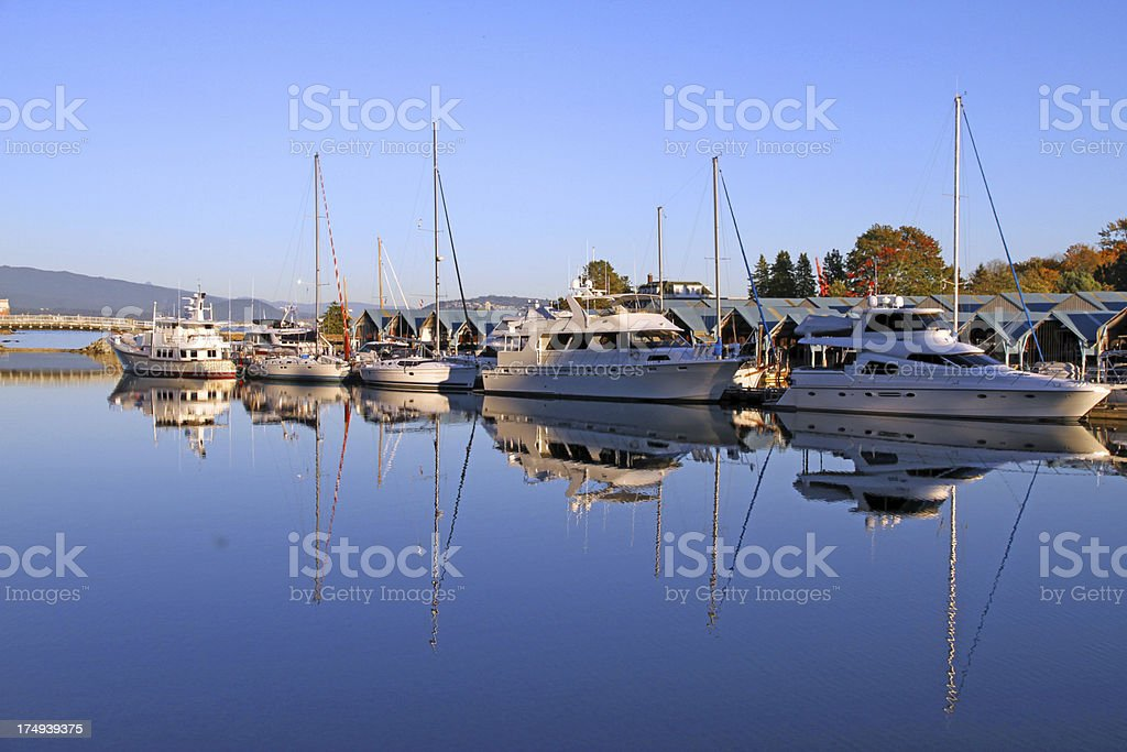 The Yacht Club royalty-free stock photo