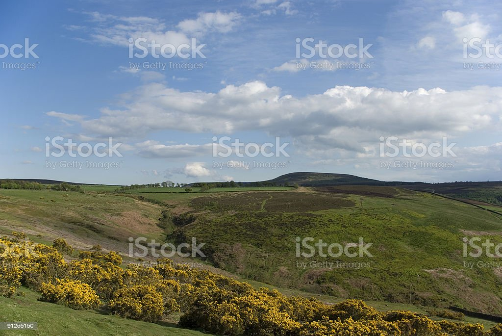 The York moors in May royalty-free stock photo