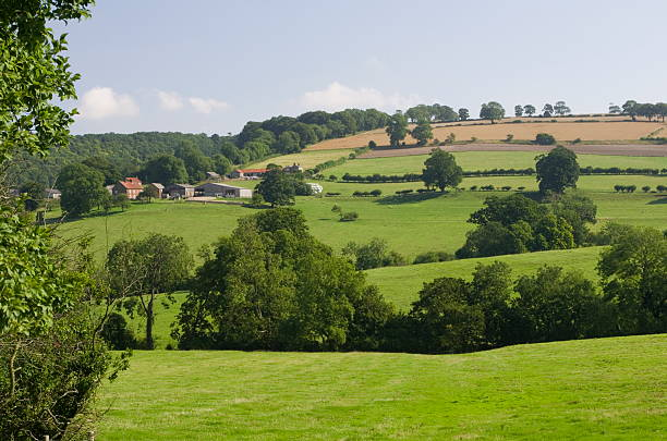The Yorkshire Wolds stock photo