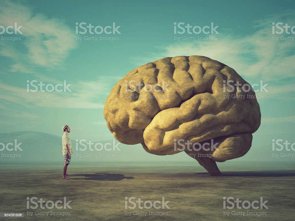 The young and conceptual image of a large stone in the shape of the human brain stock photo