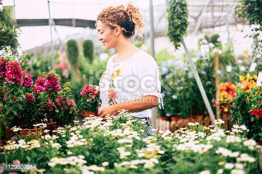 The young woman in a greenhouse with many seedlings admires the growth of white flowers like daisies. Concept of care and passion for nature. Shopping and business nature related and easy people lifestyle