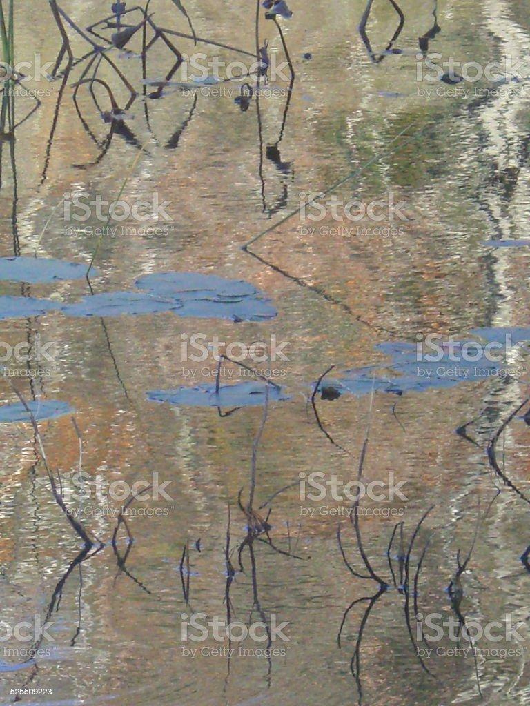The Zen of Water stock photo